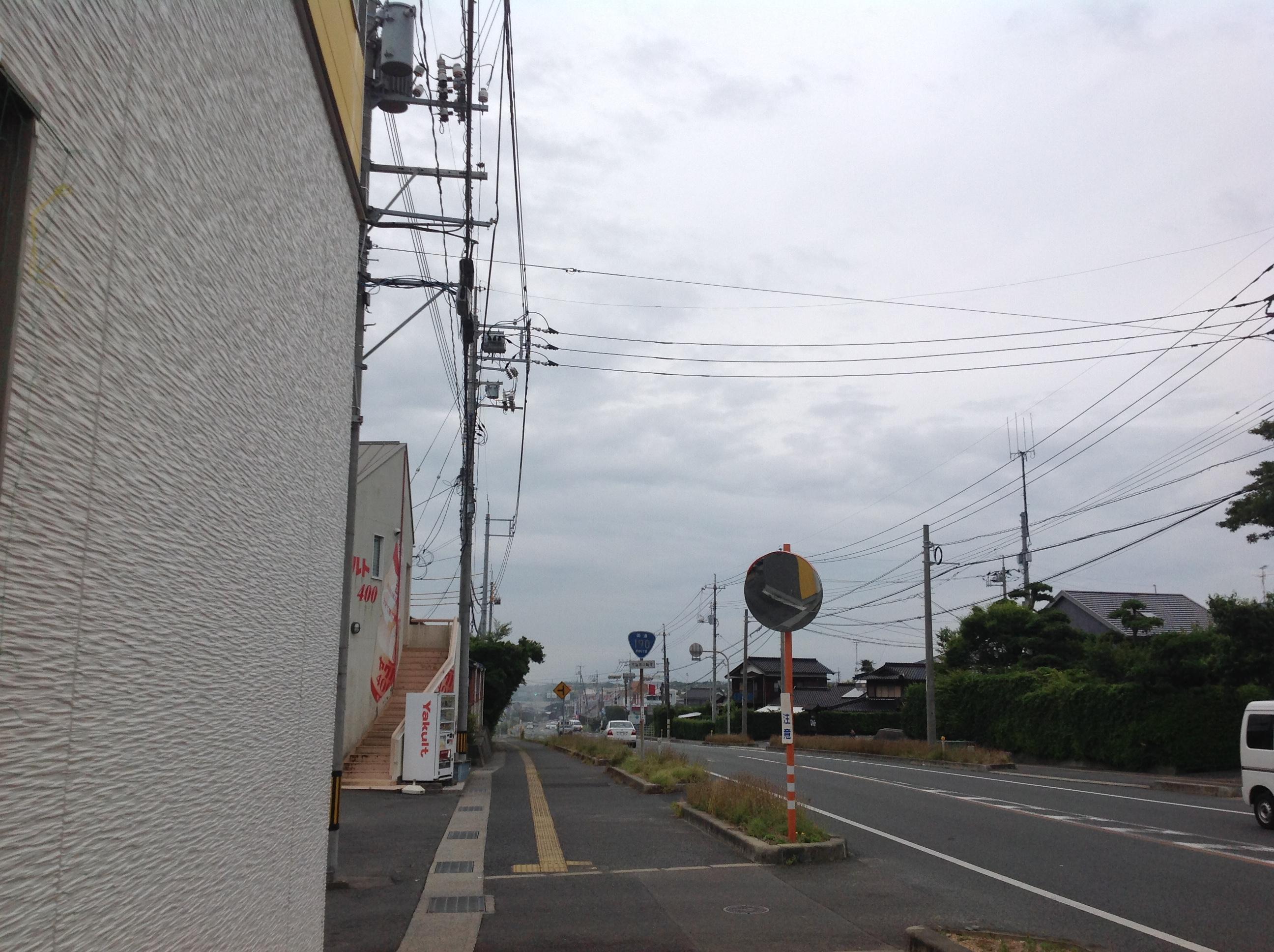 トム・フクダ西岐波店 緑のカーテン