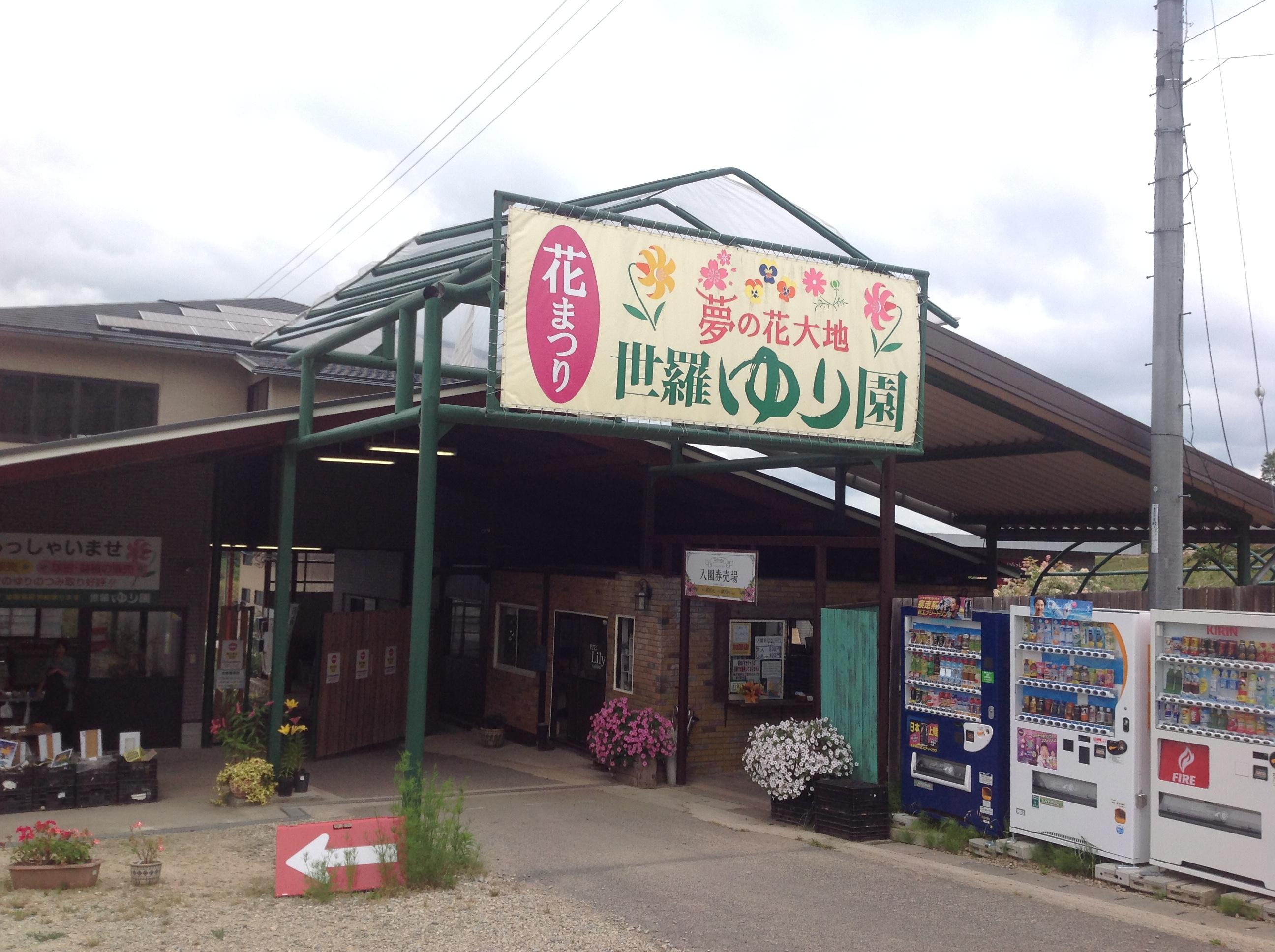 広島出張 世羅高原 寄せ植え作り